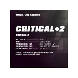 Critical +2 XXL Auto BSF Seed